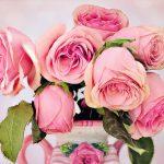 Flor de cada signo del zodiaco